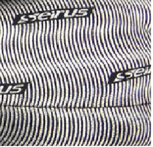 Seirus-logo-300x289